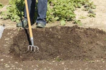Bodenvorbereitung beim Aussäen