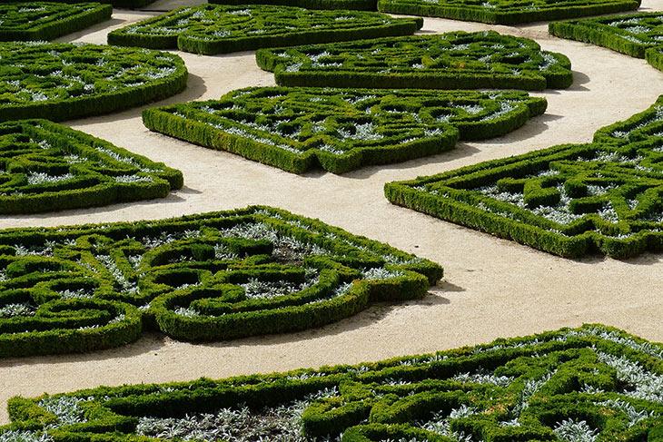 Knotengarten aus Buchsbaum