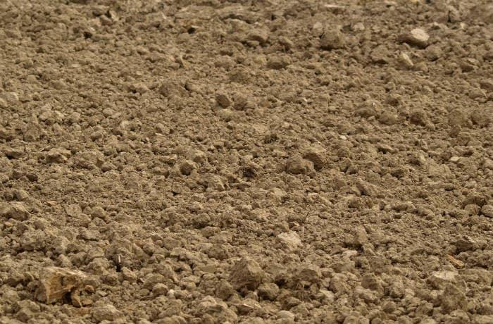 Leichter sandiger Boden