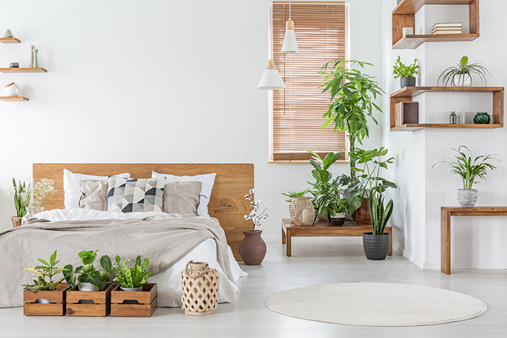 Schlafzimmer mit Zimmerpflanzen dekoriert