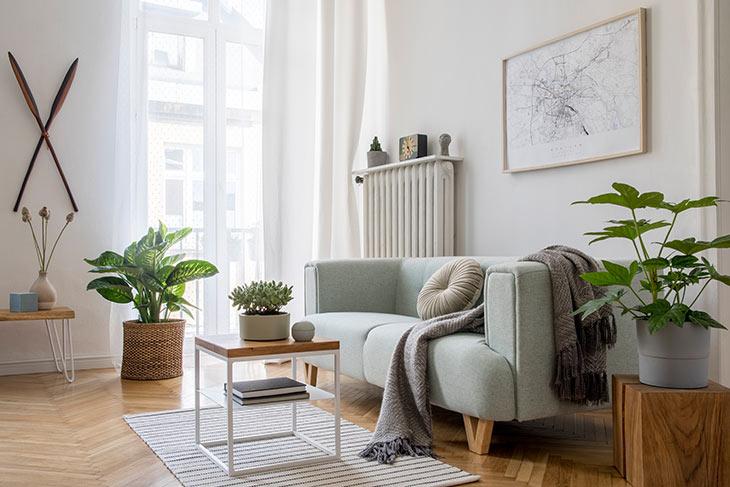 Wohnzimmer im skandinavischen Stil mit Zimmerpflanzen