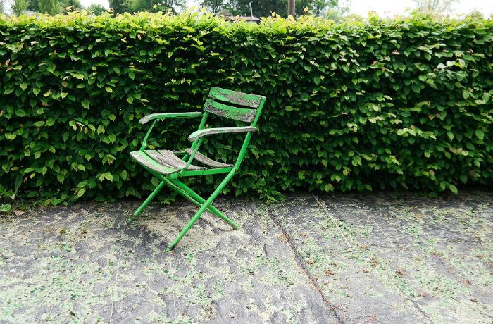 Dichte Hecke mit grünem Klappstuhl davor