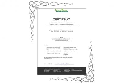 2020_Zertifikat_2.png.jpg