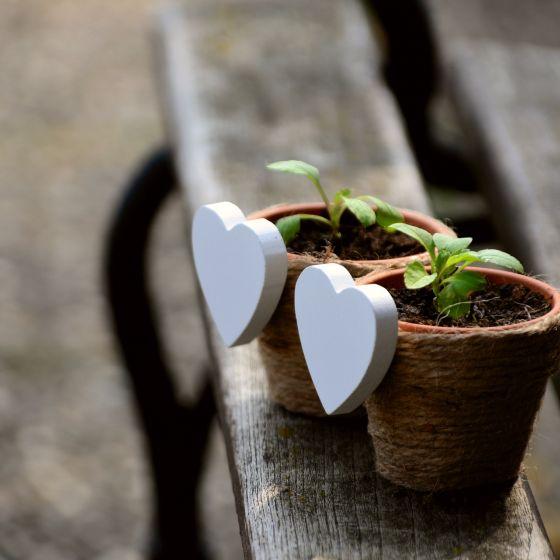 Pflanztöpfe mit weißen Herzen an der Seite
