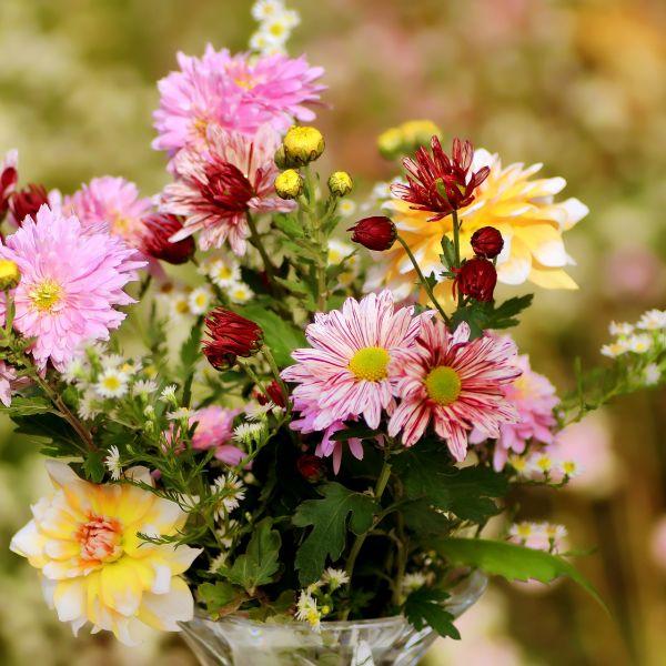 So bleiben Blumensträuße länger frisch