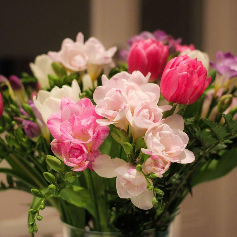 flowers-675943_1920.jpg