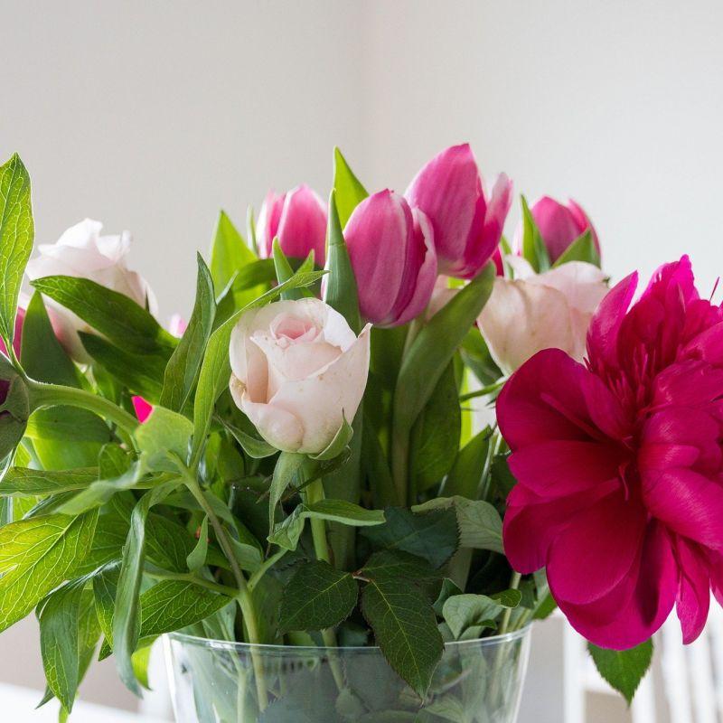 flowers-759586_1920.jpg