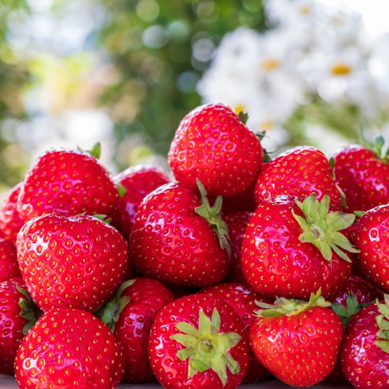 strawberries-5099527_1920.jpg