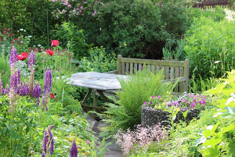 garden-4683189_1920.jpg