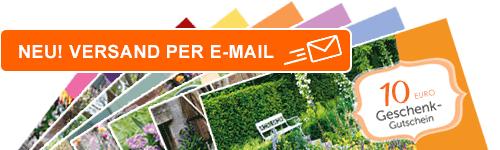 Geschenkgutscheine per E-Mail