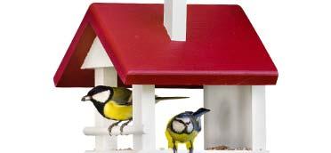 Insektenschutz & Tierschutz