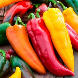 Gemüsesamen-Set Corno di Toro-Paprika