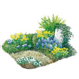 Blumenzwiebel-Sortiment für die Grabbepflanzung