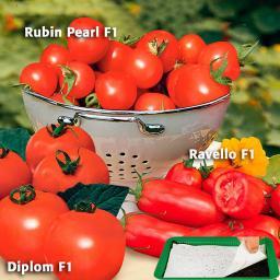 Saatplatte 11,5 x 17 cm Tomaten-Sortiment