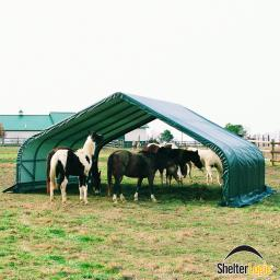 ShelterLogic Weidezelt Run-in-Shed 40,87m² inkl. Sturmanker