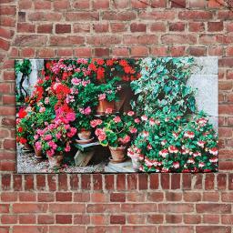 Gartengemälde Blumenlieblinge 80x140 cm
