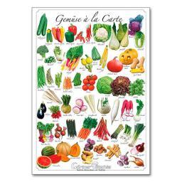 Gemüse-Gartenposter