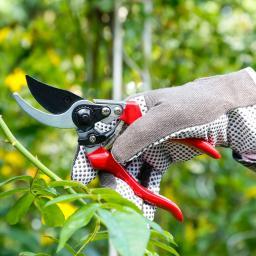 Aluminium-Gartenschere