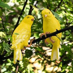 Gartenfiguren Kanarienvogel, 2er-Set