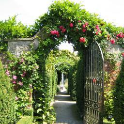 Gartenposter Eden 210 x 150 cm