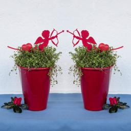 Duo Bubikopf im roten Keramiktopf
