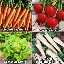 Gemüsesamen Sortiment Pilliertes Saatgut