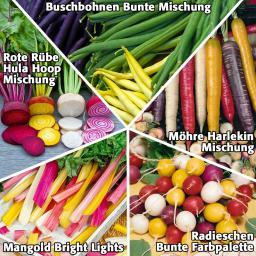 Gemüsesamen Sortiment Buntes Gemüsebeet