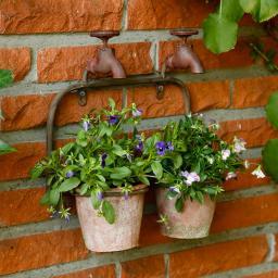 Pflanzgefäß Mauerblümchen