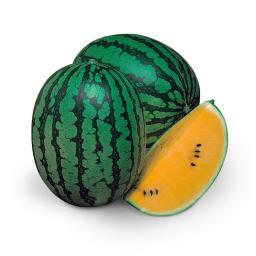 Wassermelonensamen Luteo F1
