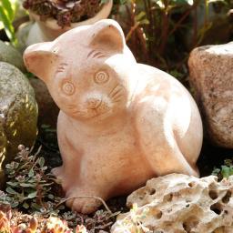 Terracotta-Kater Nelson