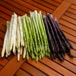 Gemüsepflanzen-Sortiment Steiners Bunter Spargel