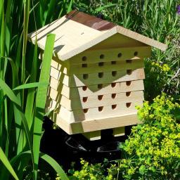 Bienenhaus Maja
