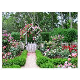 Gartengemälde Rosengarten 140 x 79 cm
