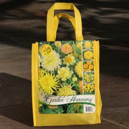 Blumenzwiebel-Sortiment Gelbes Dahlien-Beet