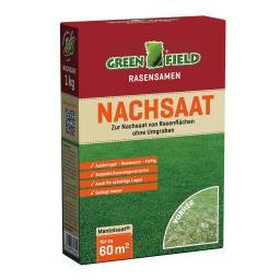 Greenfield Rasensamen zur Nachsaat, 1 kg