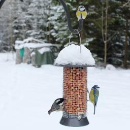 Vogelfutter Erdnusssäule
