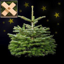 Weihnachtsbaum Nordmanntanne 80-100 cm mit Holzkreuz-Ständer