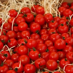 Tomatensamen Sweet Aperitif