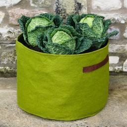 Pflanztasche, Gemüse