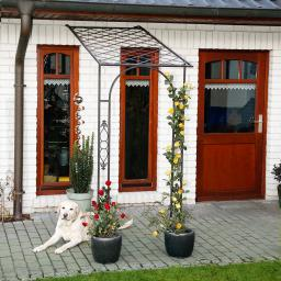Laubengang Cottage Garden