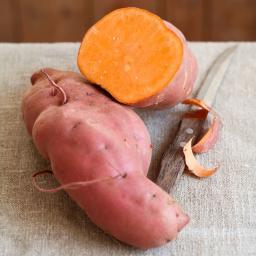 Süßkartoffelpflanze Erato Orange, im ca. 13 cm-Topf