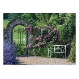 Gartenposter Rosentraum, 130 x 90 cm