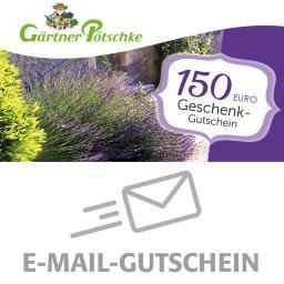 150,- Euro Online-Geschenkgutschein
