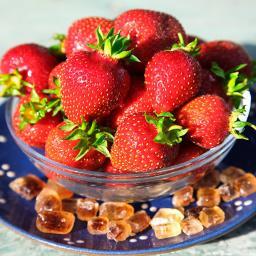 Erdbeere Candiss(S), im ca. 10 cm-Topf