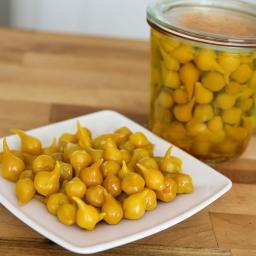 Paprikasamen Biquino Yellow