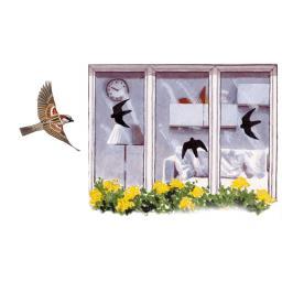 Vogel-Aufkleber für Fensterscheiben
