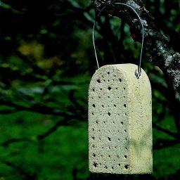 Insektennisthilfe