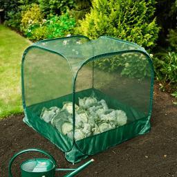 Pop-Up Frucht-Schutz-Käfig, PP-Netz, grün, 100x100x98 cm
