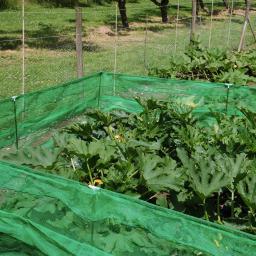 VegPatch Gemüse-Schutzzaun, 7,2 m