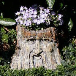 Dekofigur Baumstumpfgesicht Wotan, 24,5x29,5x29,5cm, braun